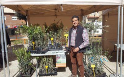 Viveros Somontano en la III Fiesta del olivo y del aceite en Huesca