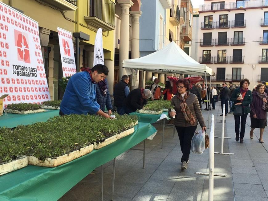 Viveros Somontano en la Fiesta del Plantero, el 1 de mayo